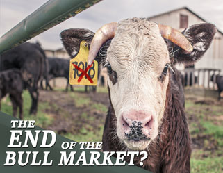 the-end-of-the-bull-market-sm